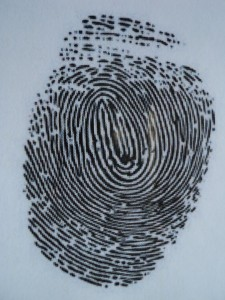 A Fingerprint is Considered Indetifying Information for Purposes of Va. Code 18.2-186.3