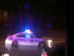 Virginia domestic assault